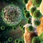 Внутрішньоутробні інфекції – наскільки це небезпечно для дитини?
