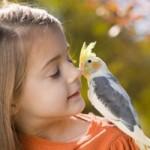 Орнітоз в дитини – причини, способи профілактики та лікування