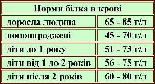 таблиця норми білка в крові