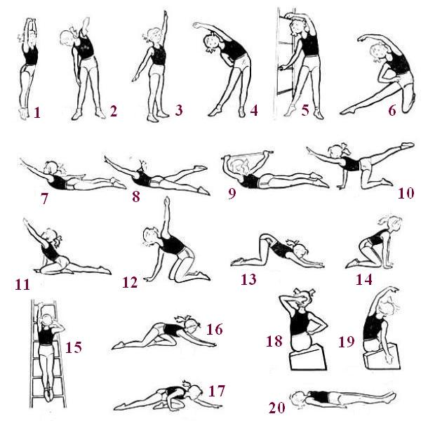 комплекс фізичних вправ при сколіозі